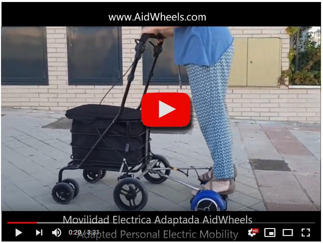motor carrito ancianos